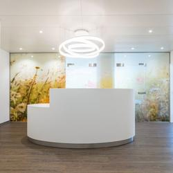Anton & Gabriel | Ovaler Empfang in Corian Glacier White mit LED-Beleuchtung